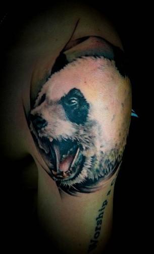 Agressive panda