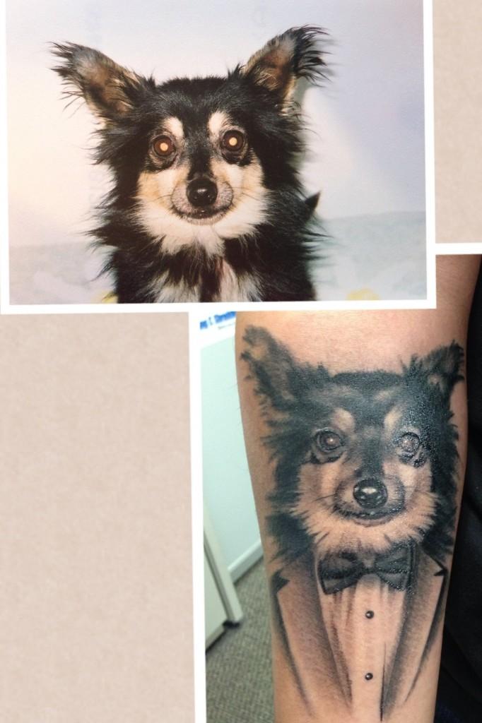 Funny dog tattoo