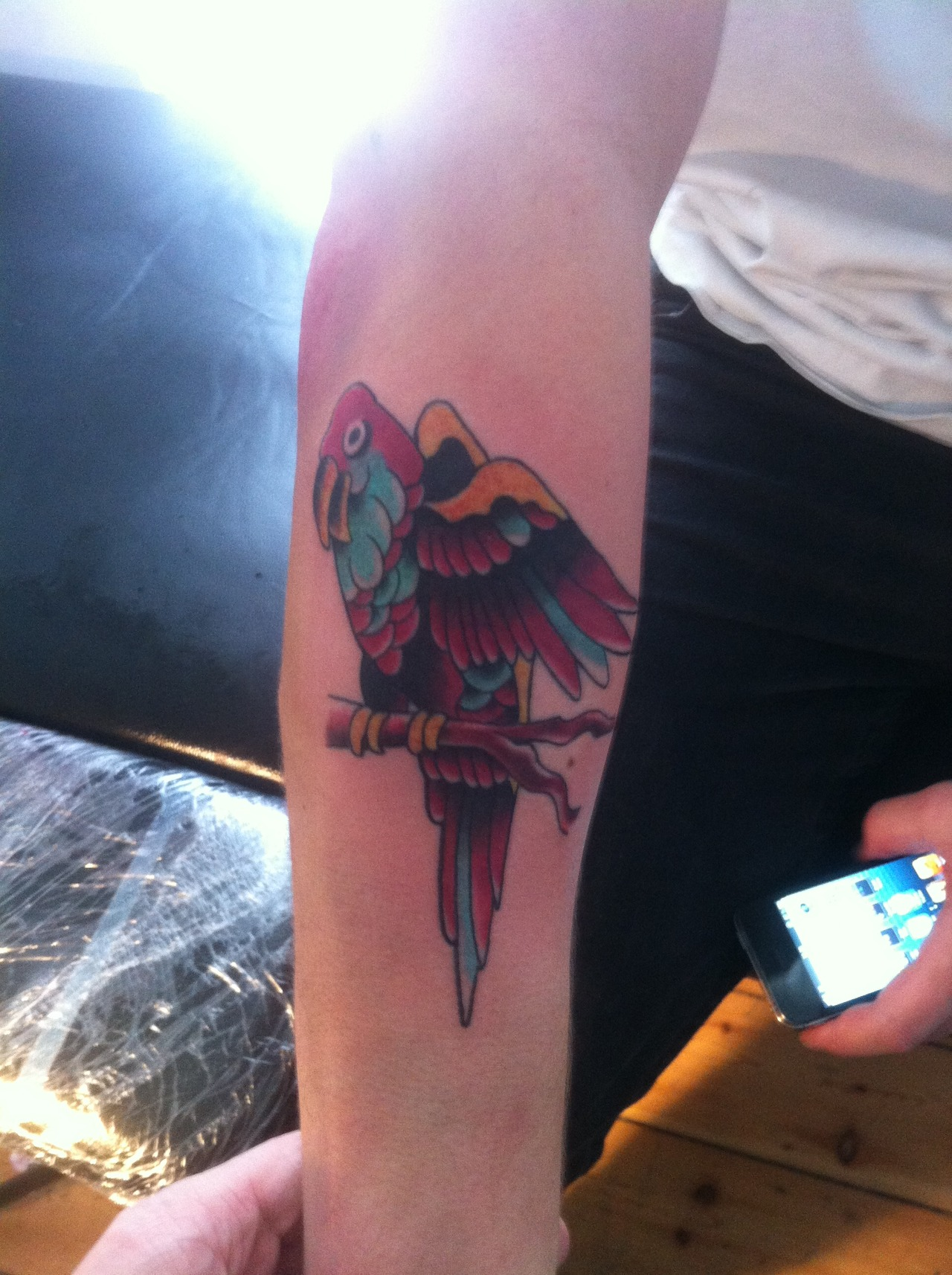 Parrot arm tattoo