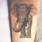 Amazing Black Ink Of Elephant
