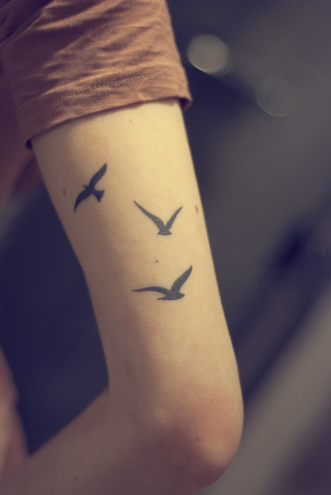 Three Birds Arm Tat