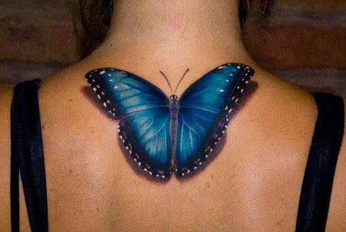 3D Butterfly