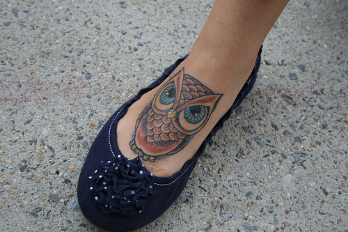 Owl On Feet