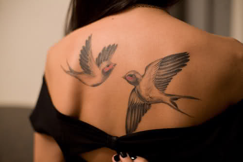 Two Swallows On Back