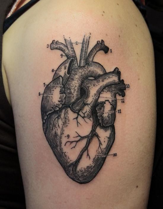 Anatomical Heart Sleeve Tattoo