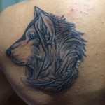 Blue eye wolf