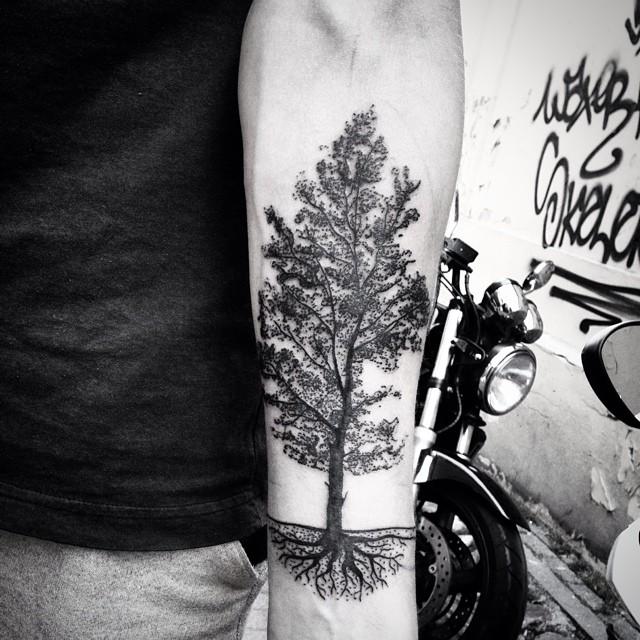 on pinterest pine tree tattoo minimal tattoo and pine tree. Black Bedroom Furniture Sets. Home Design Ideas
