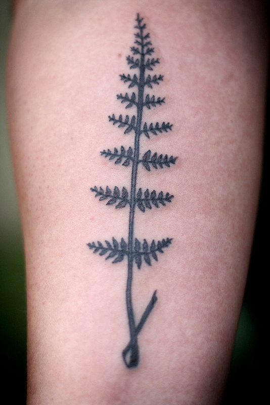 Minimal Fern Tattoo