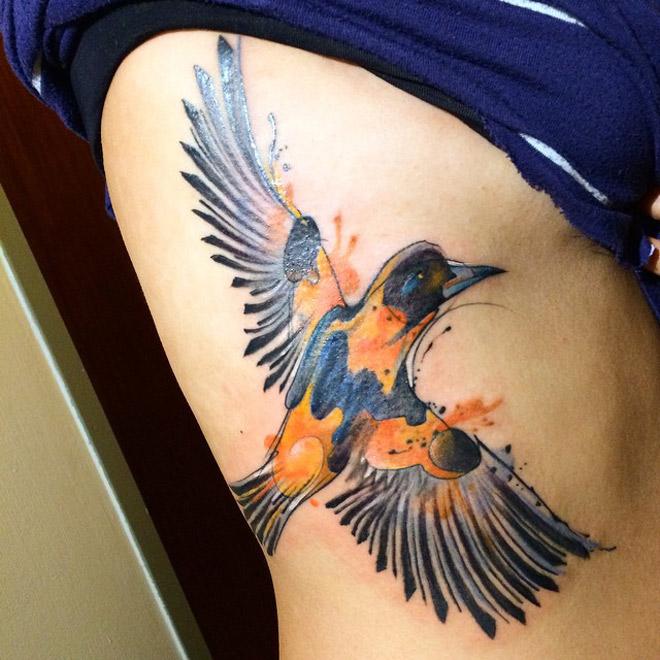 Troupial Bird
