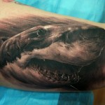 Shark Bicep Tattoo