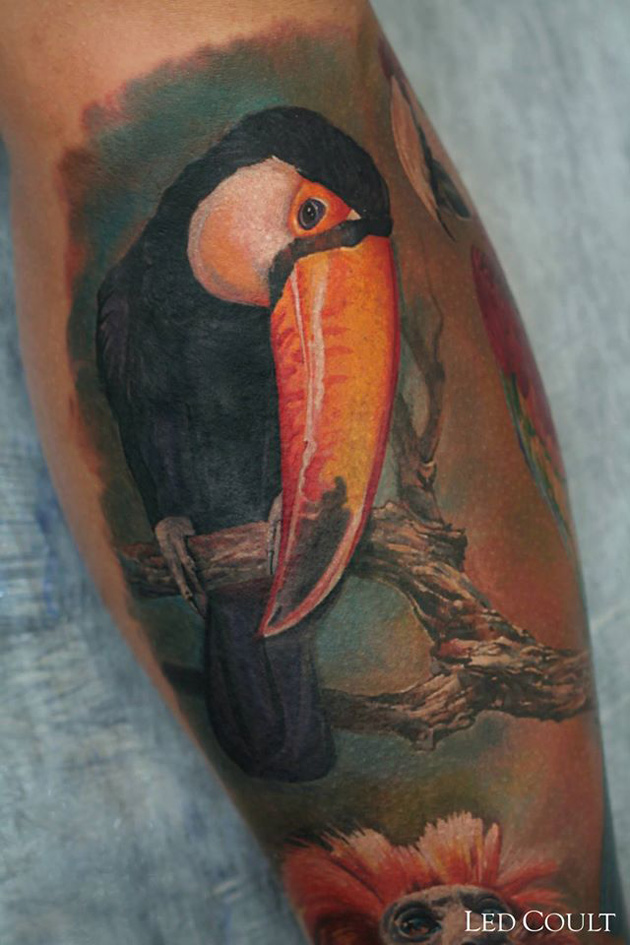 Tucan tattoo