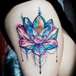 Pretty Lotus Flower