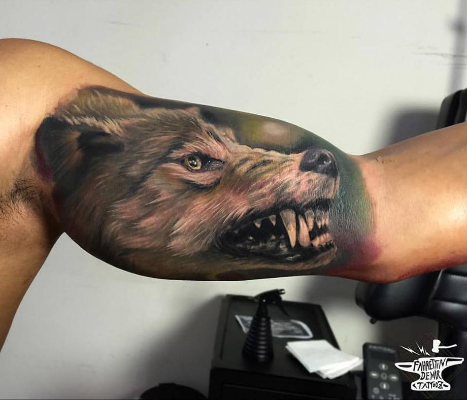 Snarling Wolf Bicep Tattoo