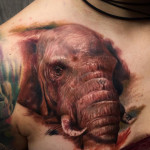 Realistic Elephant