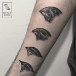 Darwin's Finches Illustration