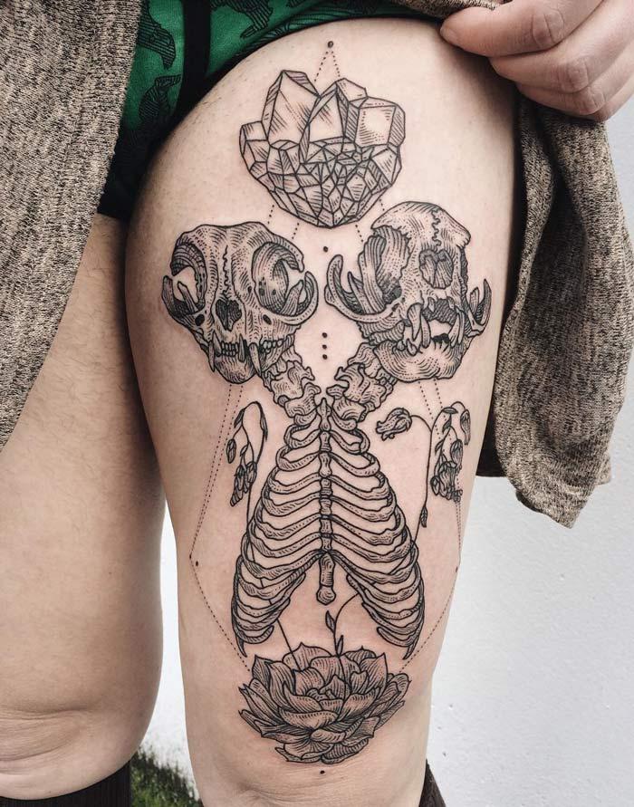 Siamese Persian Cat Skeleton