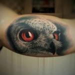 Realistic Owl Bicep Tattoo