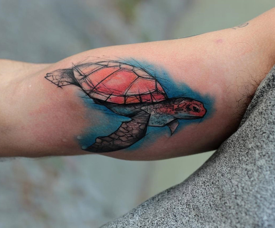 Turtle sketch tattoo