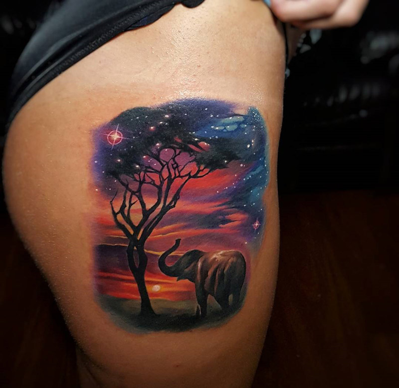 Beautiful Sunset With An Elephant & Tree