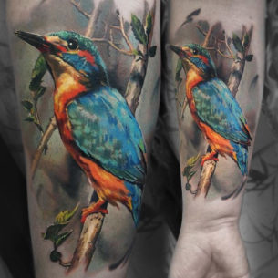 Majestic Kingfisher