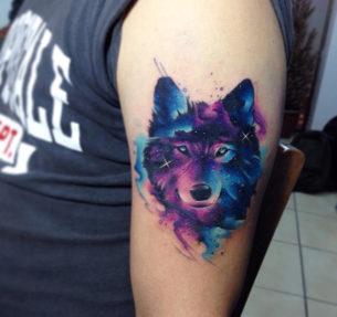 Wolf Galaxy