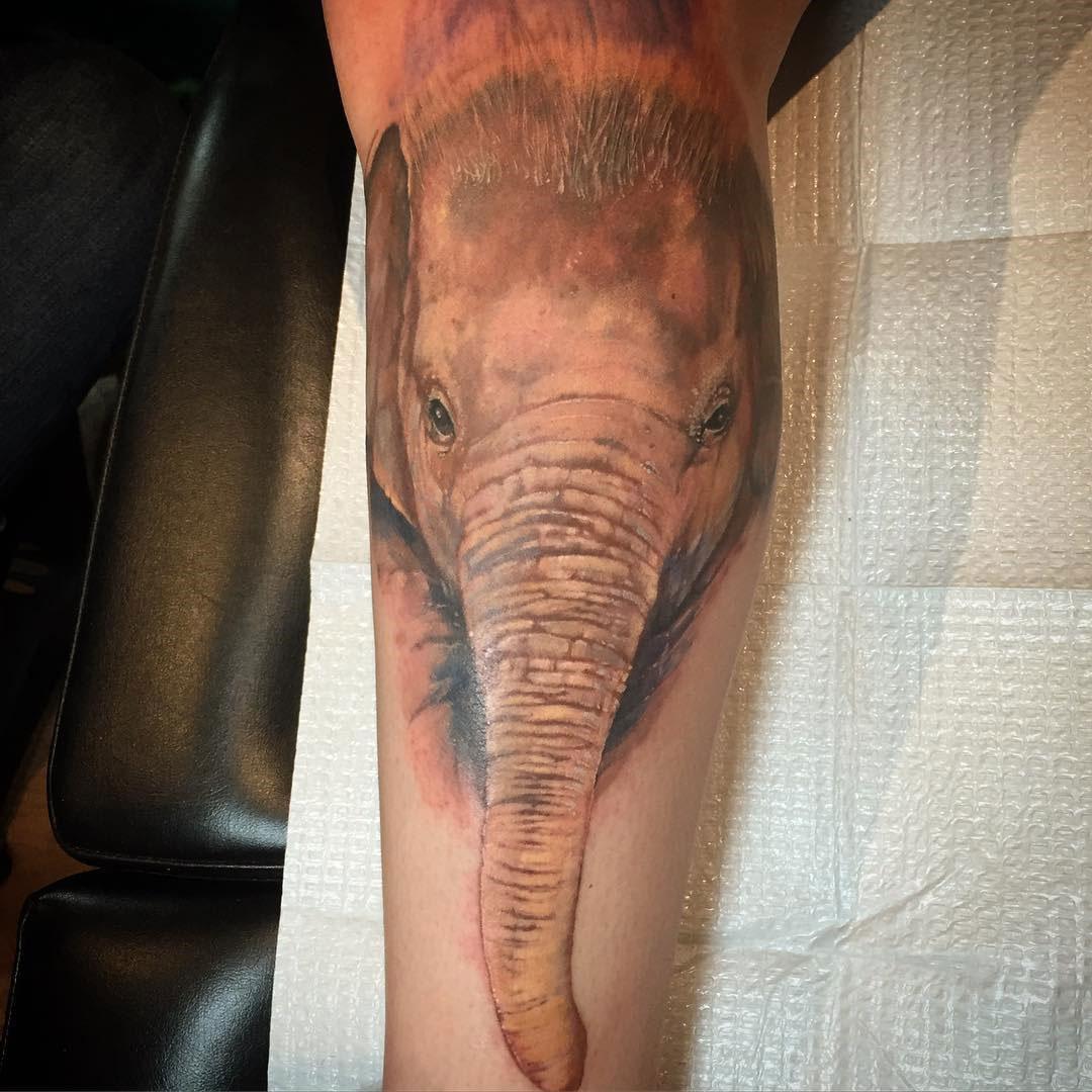 Baby Elephant Realism Piece