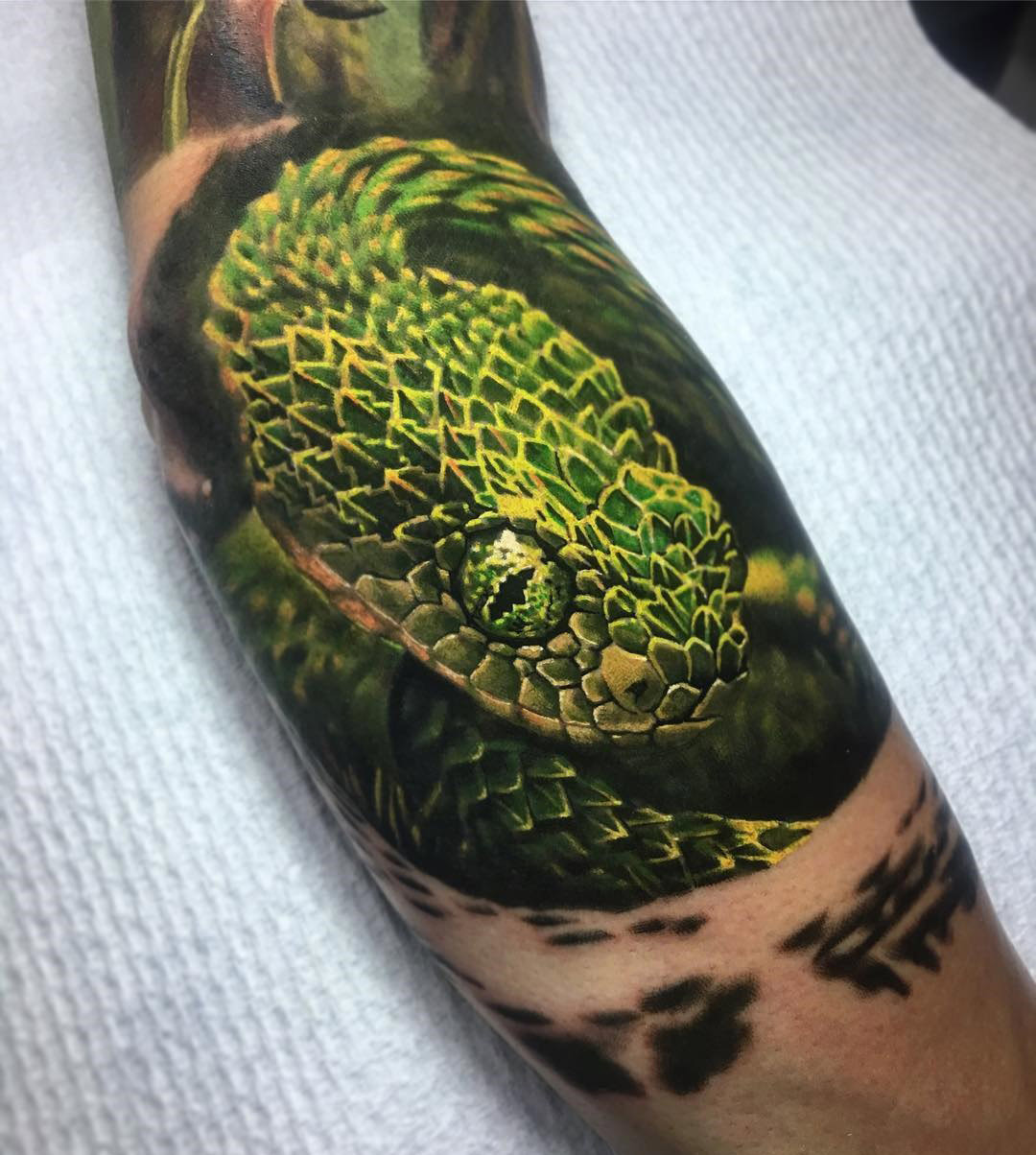Bush Viper tattoo