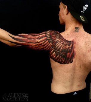 Owl Wing