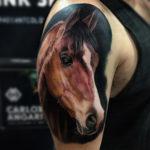 Horse Realism Tattoo