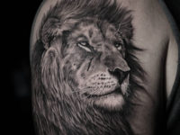 Lion portrait tattoo