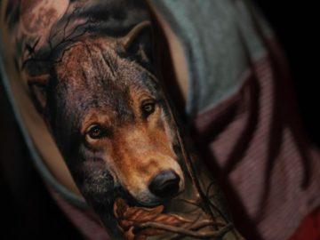 Wolf realism tattoo
