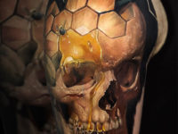 Honeycomb merged with skull
