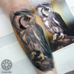 Owl realism tattoo