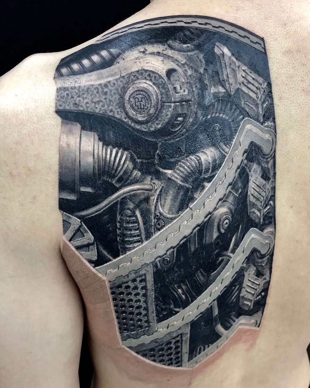 Biomechanical shoulder blade