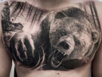 Realistic bear on guy's chest