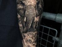 Elephant & Lion Cub