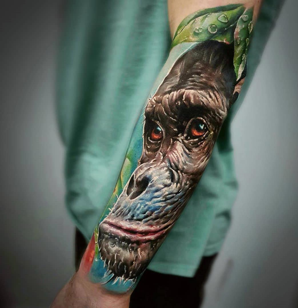 Chimpanzee Close-Up