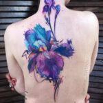 Pretty Iris Flower
