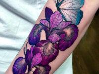 Butterfly & Iris