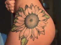 Sunflower Hip