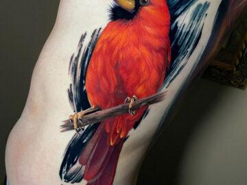 Realistic Cardinal Bird