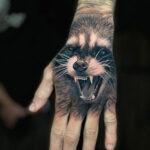 Raccoon Hand