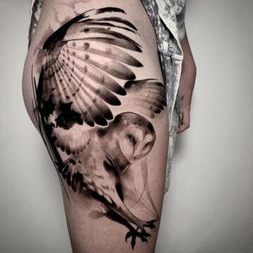 Blackwork Watercolor Owl